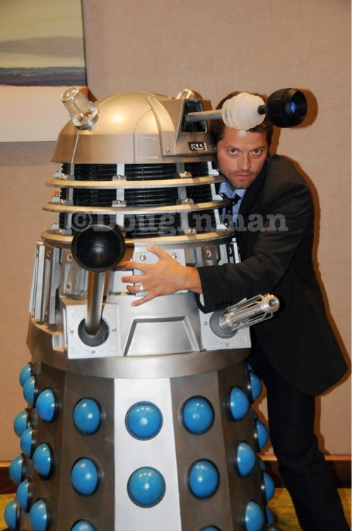 Misha will EXTERMINATE the internet!