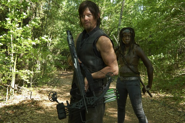 I just wanted to have an excuse to add a pic Daryl Dixon and Michonne.