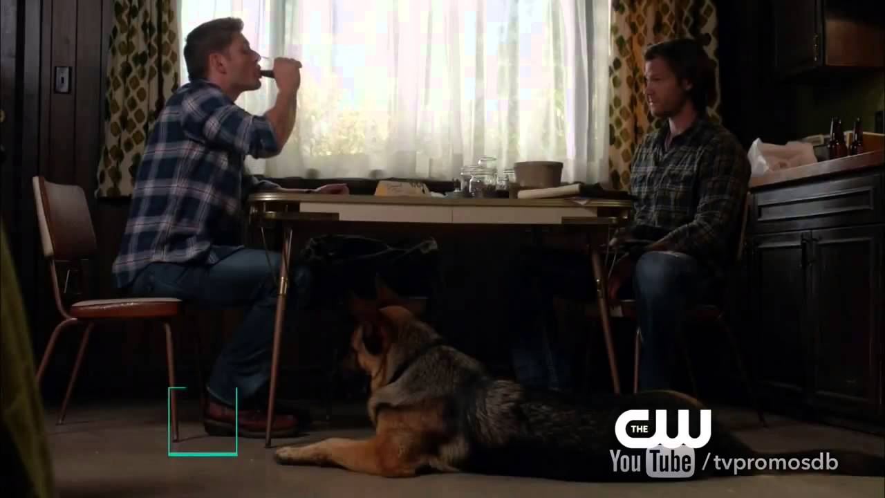 Supernatural Episode Where Dean Acts Like A Dog