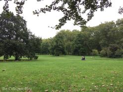 green park 4