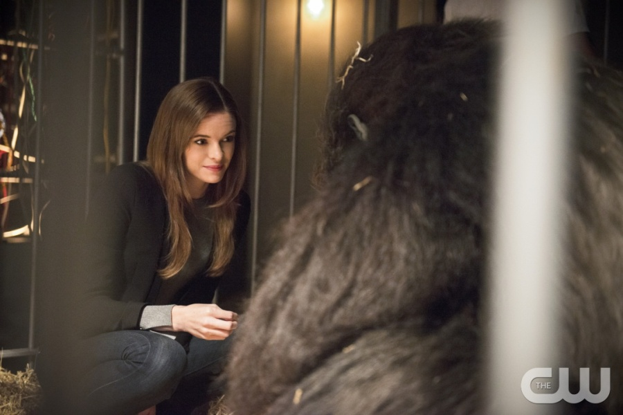 """The Flash -- """"Gorilla Warfare"""" -- Image FLA207B_0006b.jpg -- Pictured: Danielle Panabaker as Caitlin Snow -- Photo: Cate Cameron/The CW -- © 2015 The CW Network, LLC. All rights reserved."""