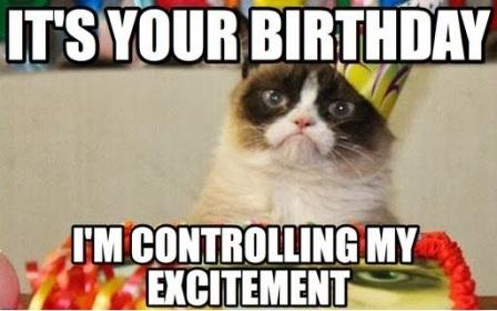 exictement-cat-birthday-meme